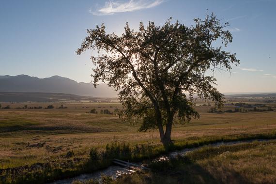 Landscape fine art print by Photo By Orion